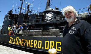 Seashepherd460